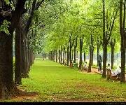 Bangalore Cubbon Park